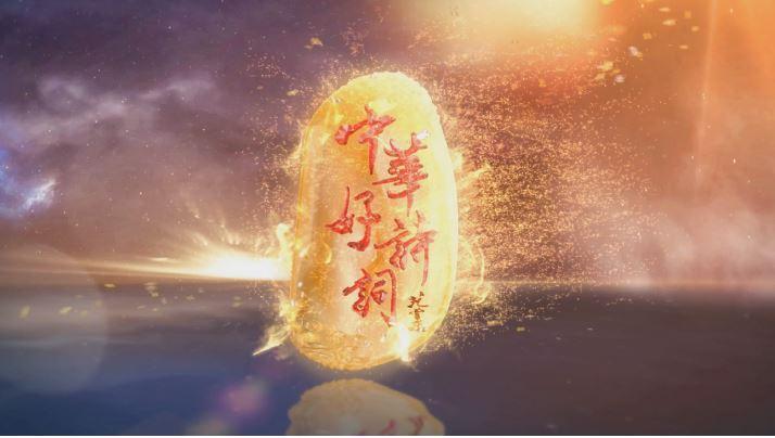 河北卫视-中华好诗词