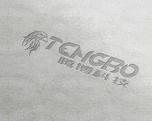腾博公司 LOGO设计