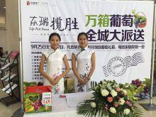 东瑞揽胜中秋节活动