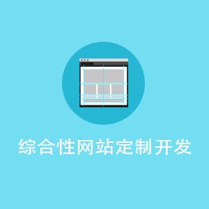 综合性网站定制开发