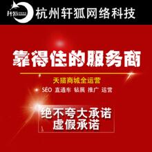 淘宝天猫微信代运营整店托管美工直通车钻展推广SEO优化壹季度