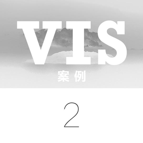________ VIS设计 案例二 ________