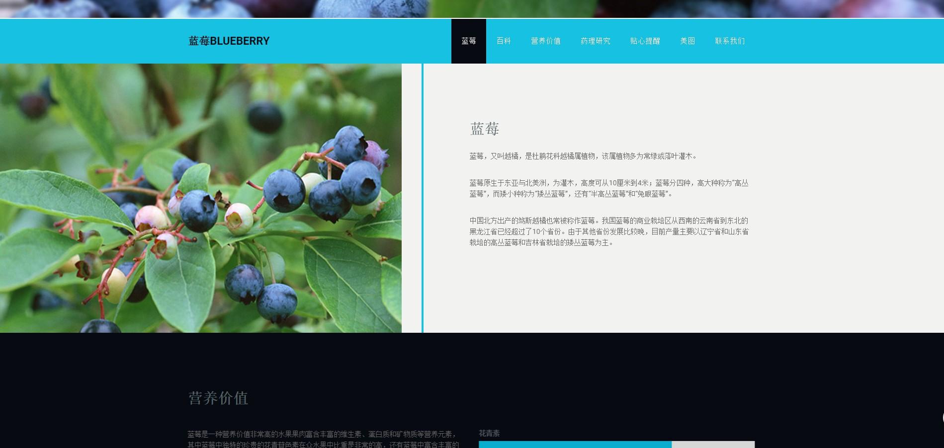 蓝莓,水果之王