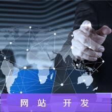 功能型网站开发,商城类,服务类,行业型网站开发