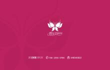 蝶妃内衣logo