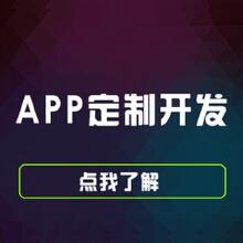 威客服务:[72744] app定制开发