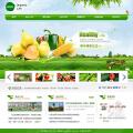 生态农业官网