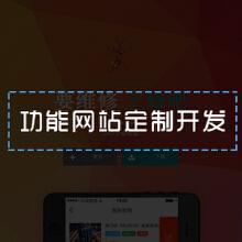 威客服务:[48163] 定制功能网站