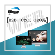 B2B\C2C\O2O等电子商务网站定制开发
