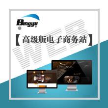 高级电子商务网站开发