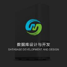数据库设计与开发