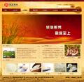 古典风格网站设计