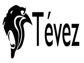球员个人身份logo设计