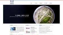 网站案例-陕西小小