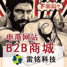 雷铭 B2B商城定制开发 b2b电商网站建设 1OO%源码