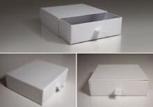 威客服务:[84555] 包装盒(袋)款式设计