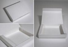 威客服务:[84558] 包装盒(袋)款式设计