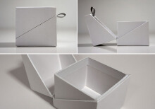 威客服务:[84556] 包装盒(袋)款式设计