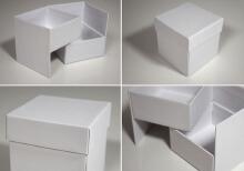 威客服务:[84557] 包装盒(袋)款式设计