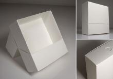 威客服务:[84559] 包装盒(袋)款式设计
