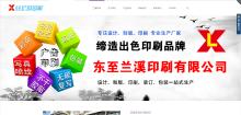 威客服务:[84984] 宣传展示型网站建设