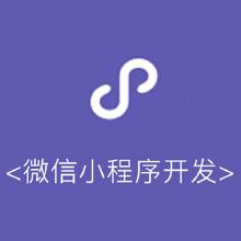 威客服务:[88548] 微信小程序开发设计制作
