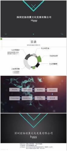深圳宏扬羽翼文化发展有限公司(简介1)