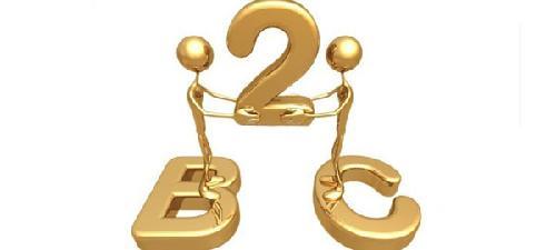B2C的类型有哪些,B2C如何运营和管理