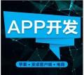 app开发,软件开发,云南网站建设公司,昆明网站设计