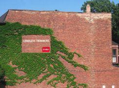 企业大量投放墙体广告牌制作的四大因素