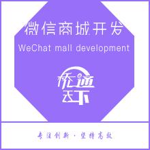 微信商城开发