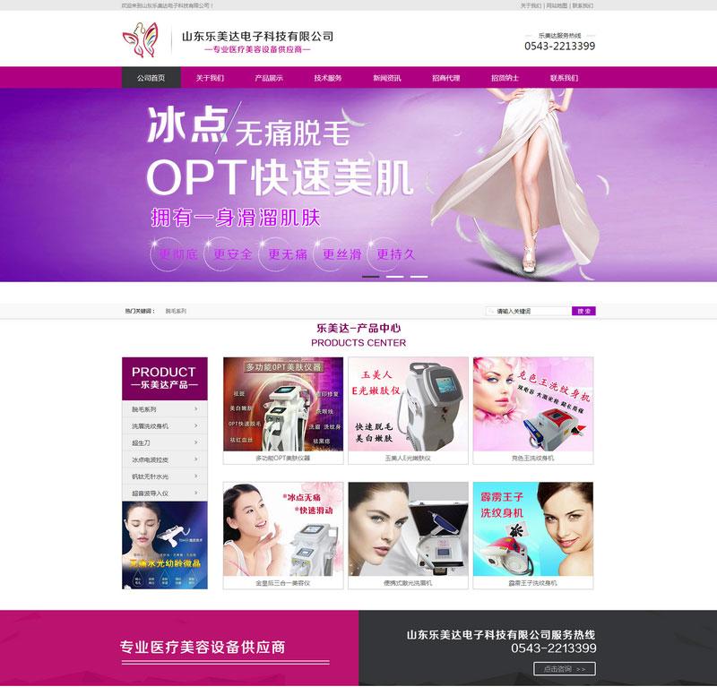 山東樂美達電子科技網站建設