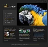 企业网页设计选择配色的方法,如何找到合适的颜色