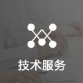 技术服务/程序/代码/二次开发