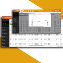 车辆管理物流货运系统/GPS定位/二次升级开发定制软件