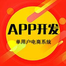 APP定制开发 单用户商城系统IOS/安卓