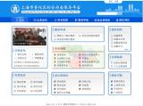 政务类网站