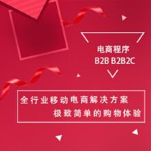 威客服务:[98833] 电商网站 B2B B2B2C
