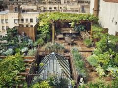家庭屋顶花园设计欣赏