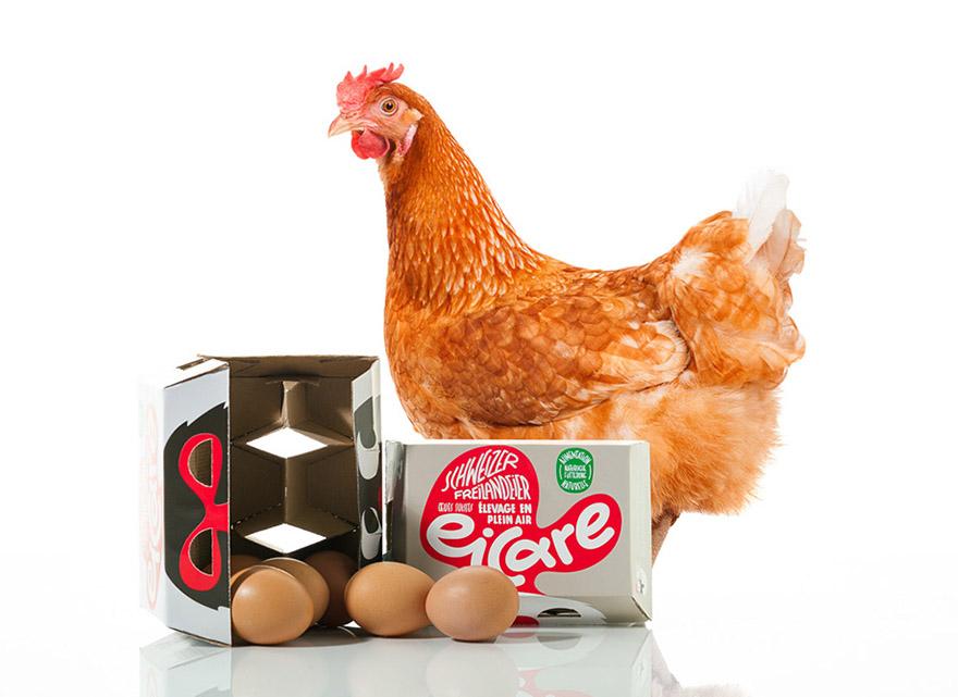 eicare eggs
