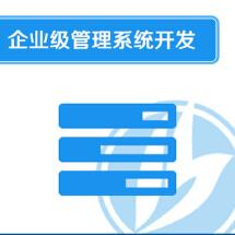 企业级管理系统开发