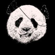可爱的海盗熊猫T恤设计