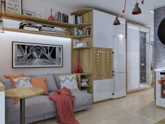一款30平米省钱攻略的新房装修设计效果图