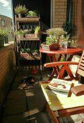 阳台休闲区花架装修