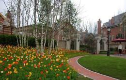 园林景观花境设计案例