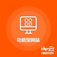 威客服务:[106615] 【智尊定制版】功能型网站