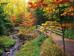 庄园小径园林景观设计欣赏
