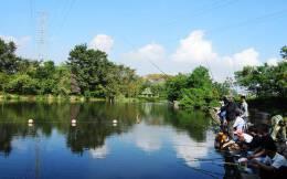 农村利比亚策划: 百渔乐园•虾兵蟹将王国