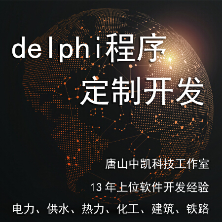 delphi程序定制开发