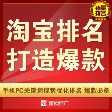 威客服务:[109562] 淘宝天猫网店铺推广手机流量关键词搜索优化排名宝贝收藏打造爆款